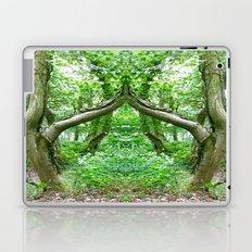 Wizard's Arch Laptop & iPad Skin