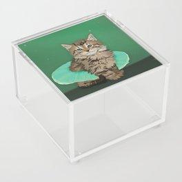 Glamourpuss Acrylic Box