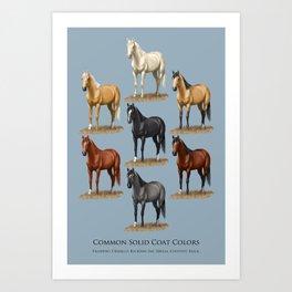 Horse Common Solid Coat Colors Chart Art Print