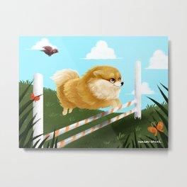 Pomeranian JUMP Metal Print