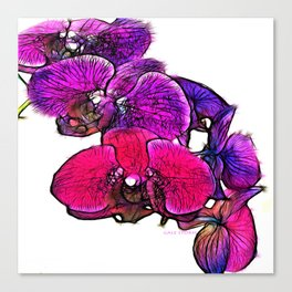 :: Orchids at Breakfast :: Canvas Print