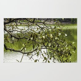 Tree Branches Hanging over the Emerald Green Colored Hoan Kiem Lake in Hanoi, Vietnam Rug