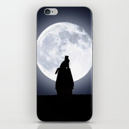 Cat by Day, Vigilante by Night iPhone Skin