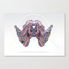 DISC12 Canvas Print