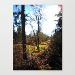 Nature's Backdrop- Pacific Northwest Morning Canvas Print