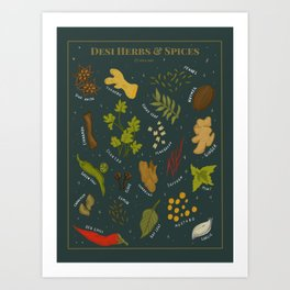 Desi Herbs and Spices Art Print