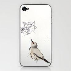 Northern Flicker iPhone & iPod Skin