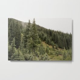 Colorado Greens Metal Print