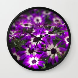 Cineraria Flower Wall Clock