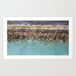 Bora Bora Algae Art Print