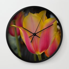 Yellow and Pink Tulip by Teresa Thompson Wall Clock