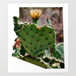 Sonoran Love / Arizona Art Print