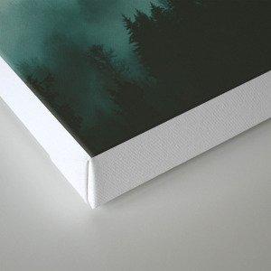dark fog Canvas Print