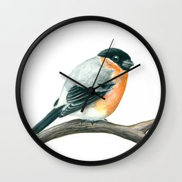 Bullfinch bird Wall Clock