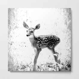 The Sweetest fawn Black & White Metal Print