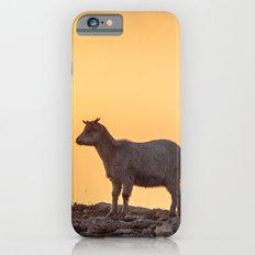Goat baby sunset E5-5789 iPhone 6s Slim Case