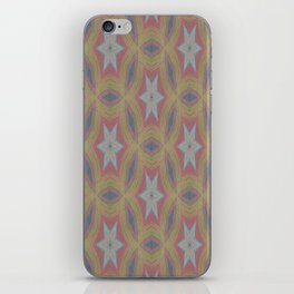 Ann Arbor chalk 6233 iPhone Skin