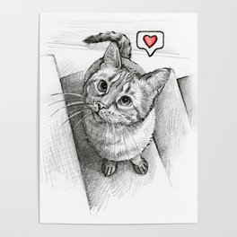 Cute Kitty Cat - Love Me Poster