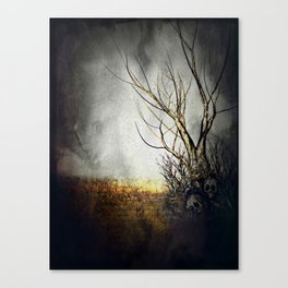 Land Of The Lost Canvas Print