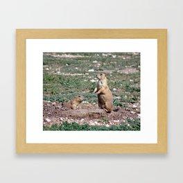 Prairie Dog Town Framed Art Print
