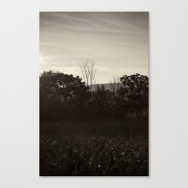 And In The Fields Canvas Print
