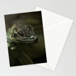 Philippine Sailfin Lizard Stationery Cards