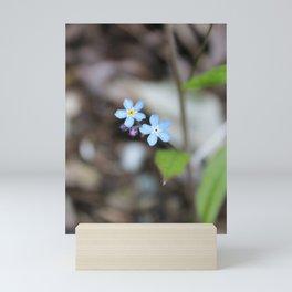 Two Forget-Me-Nots Mini Art Print