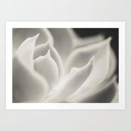 white glow Art Print