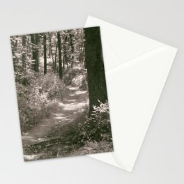 A Wooded Path Stationery Cards