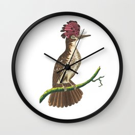 Crested Tody Wall Clock