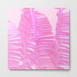 Pink Whisper Metal Print