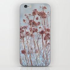A Gentle Whisper iPhone & iPod Skin