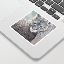 Just Chillin - Cougar Painting by Alan M Hunt Sticker