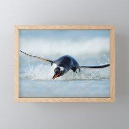 Gentoo penguin diving in Atlantic Ocean Framed Mini Art Print