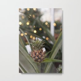 Baby Pineapple Metal Print