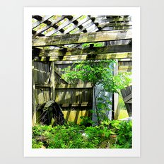 Nature Taking Over 2 Art Print