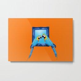 macaw Bird sitting on frame orange Metal Print