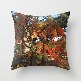 Fall color in London Throw Pillow