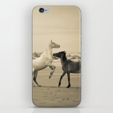 Wild Horses 2 iPhone & iPod Skin