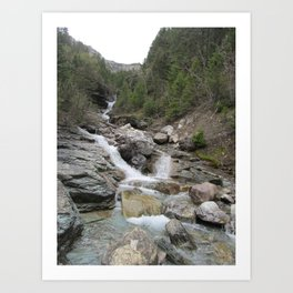 WATERTON3 Art Print