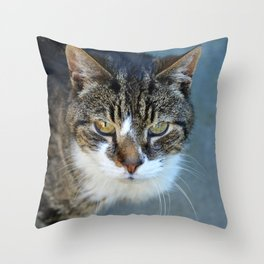 Please let me in Throw Pillow