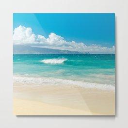 Hawaii Beach Treasures Metal Print