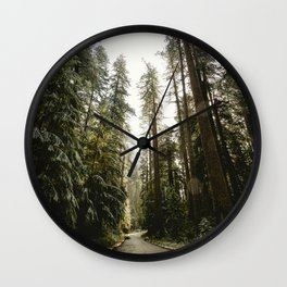 Redwood Forest Adventure III - Nature Photography Wall Clock