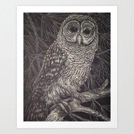 Illustrated Owl Art Print
