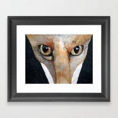 Fox Eyes Framed Art Print