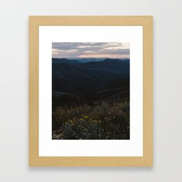 Mt Hotham Wildflowers Framed Art Print