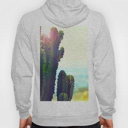 Green Desert Cactus With Sunlight Illumination Hoody