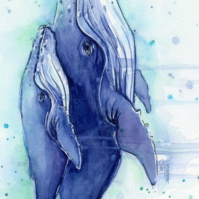 Humpback Whale Watercolor Mom and Baby Painting Whales Sea Creatures Leggings