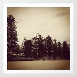 Beach Trees Art Print