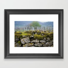 Vineyard Wall, Eastern France Framed Art Print